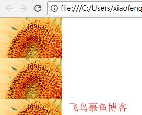 CSS背景图片