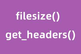 php 获取文件大小的方法